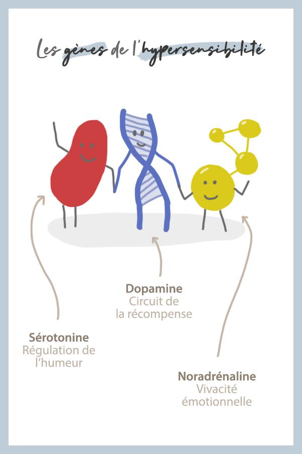 Ces 3 ensembles de gènes font de vous une personne hypersensible